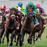 Best Bets: Pegasus World Cup and Oaklawn Picks